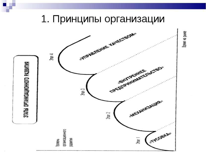 1. Принципы организации