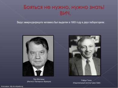 Вирус иммунодефицита человека был выделен в 1983 году в двух лабораториях: Фо...