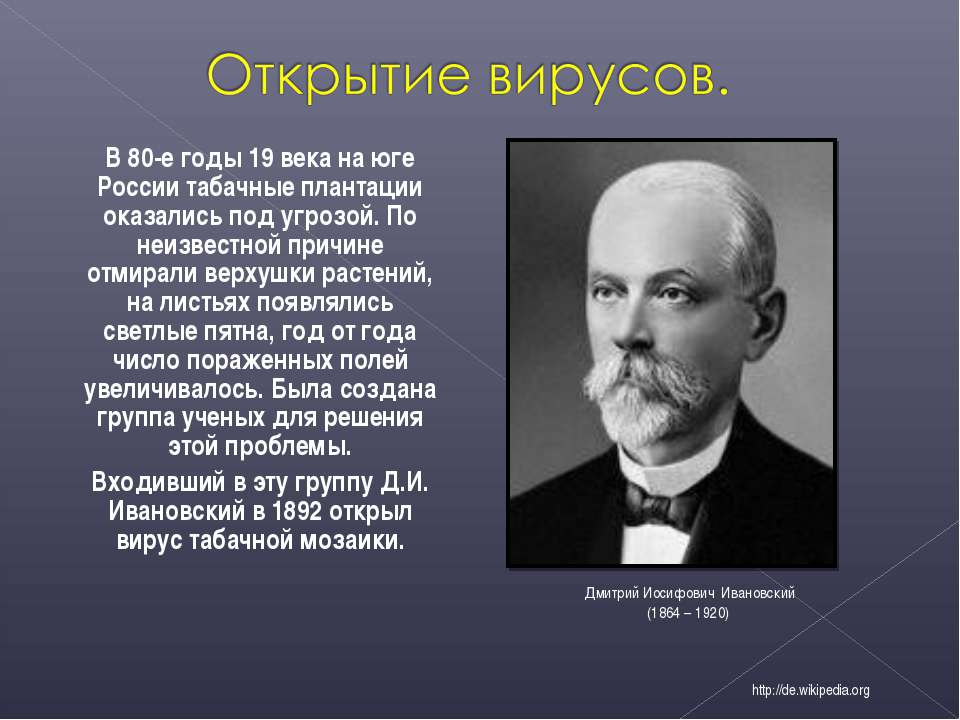 В 80-е годы 19 века на юге России табачные плантации оказались под угрозой. П...