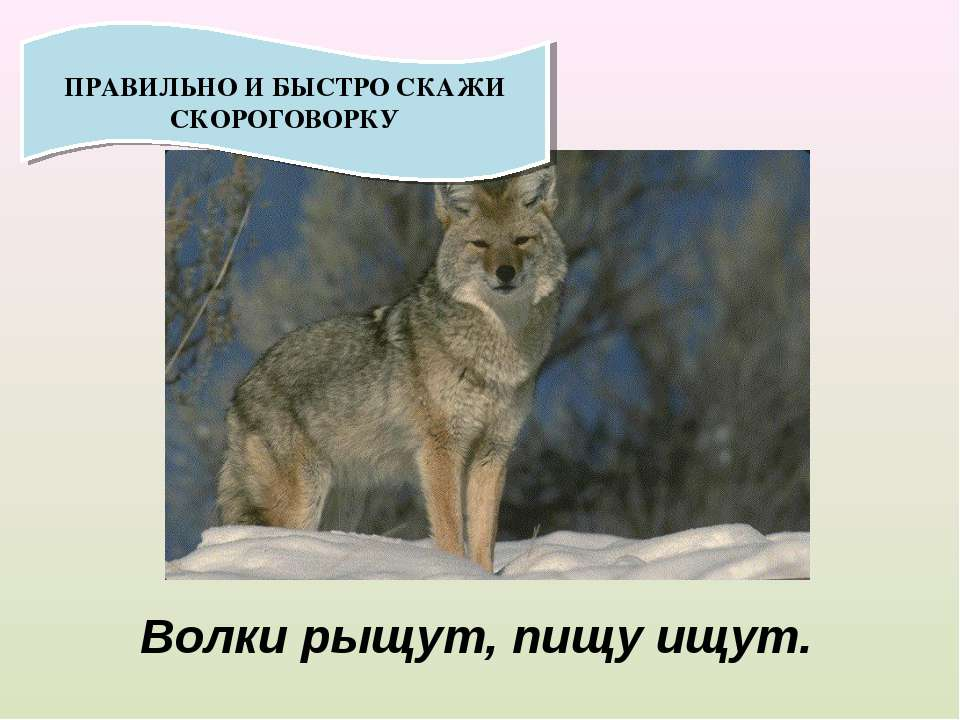 ПРАВИЛЬНО И БЫСТРО СКАЖИ СКОРОГОВОРКУ Волки рыщут, пищу ищут.