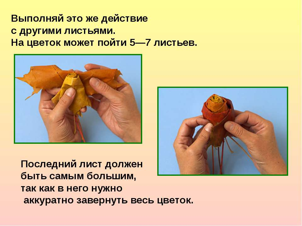 Выполняй это же действие с другими листьями. На цветок может пойти 5—7 листье...