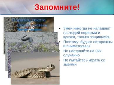 Запомните! Змеи никогда не нападают на людей первыми и кусают, только защищая...
