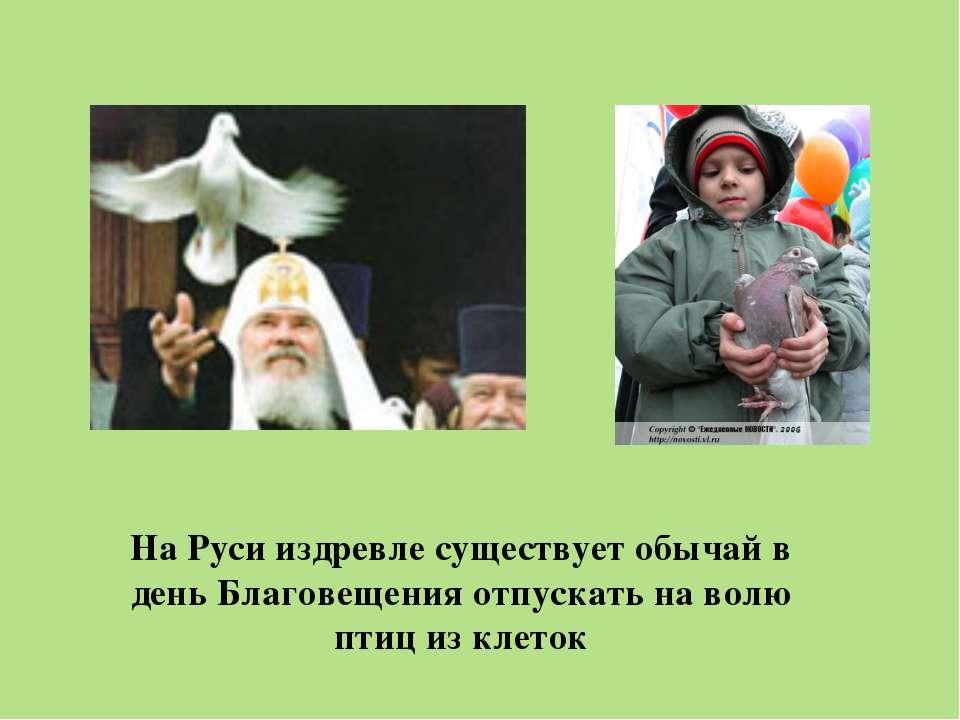 На Руси издревле существует обычай в день Благовещения отпускать на волю птиц...
