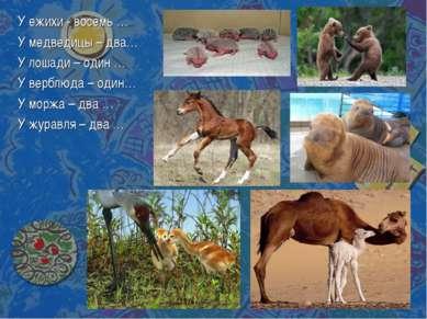 У ежихи - восемь … У медведицы – два… У лошади – один … У верблюда – один… У ...