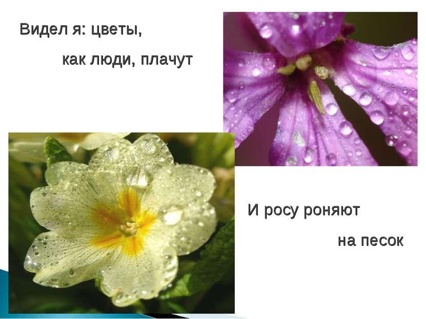 Видел я: цветы, как люди, плачут И росу роняют на песок