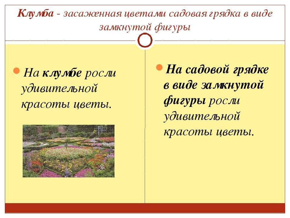 Клумба - засаженная цветами садовая грядка в виде замкнутой фигуры На клумбе ...