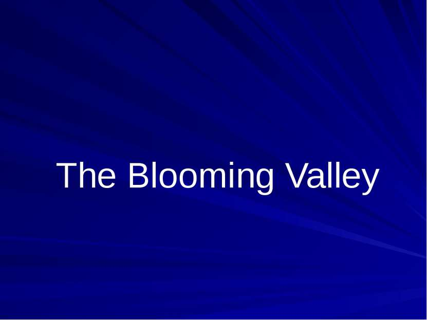 The Blooming Valley