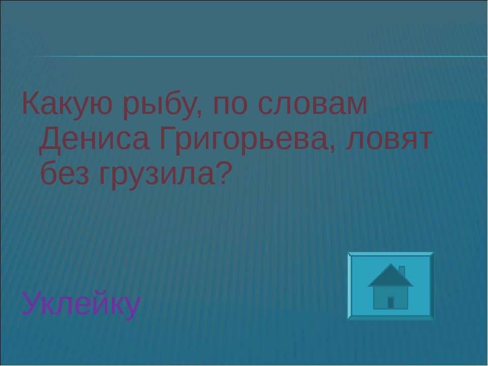 Какую рыбу, по словам Дениса Григорьева, ловят без грузила? Уклейку