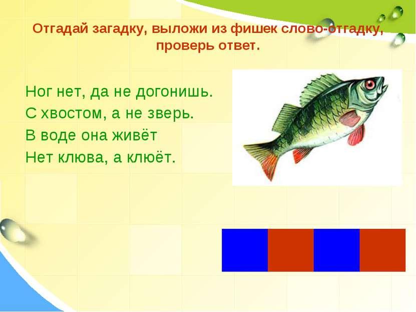 Отгадай загадку, выложи из фишек слово-отгадку, проверь ответ. Ног нет, да не...