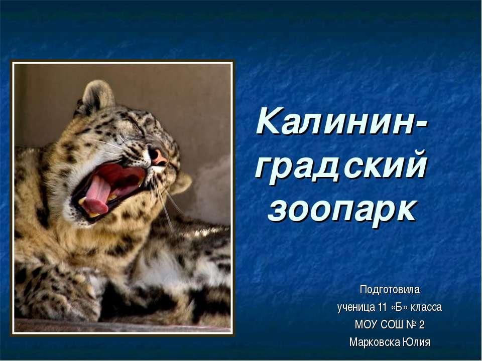 Калинин-градский зоопарк Подготовила ученица 11 «Б» класса МОУ СОШ № 2 Марков...