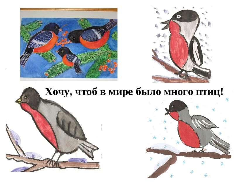 Хочу, чтоб в мире было много птиц!