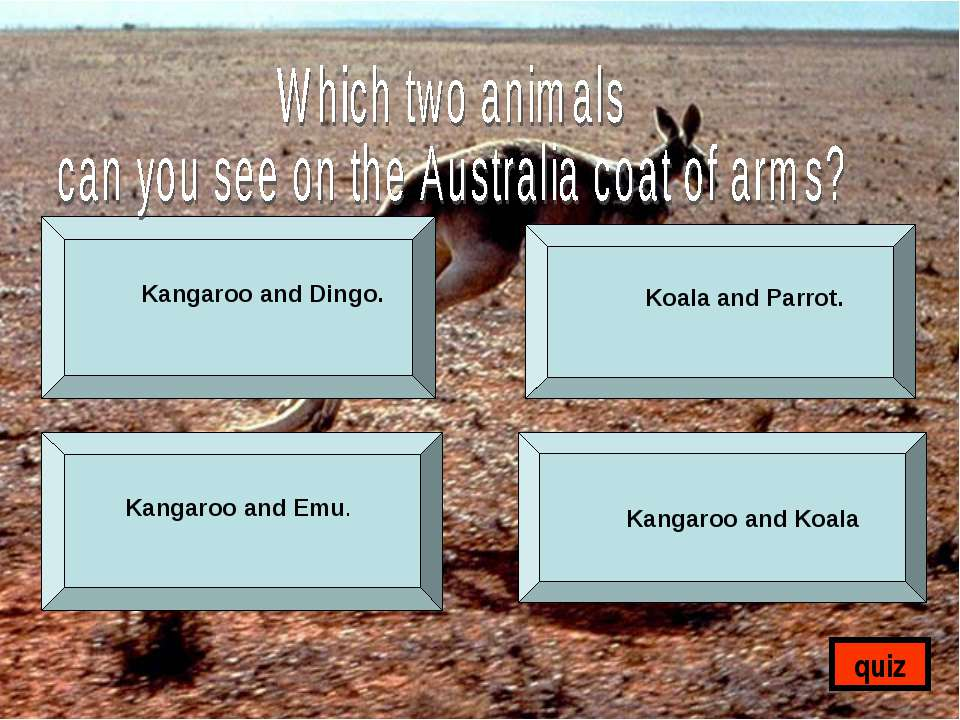 Kangaroo and Dingo. Koala and Parrot. Kangaroo and Emu. Kangaroo and Koala quiz