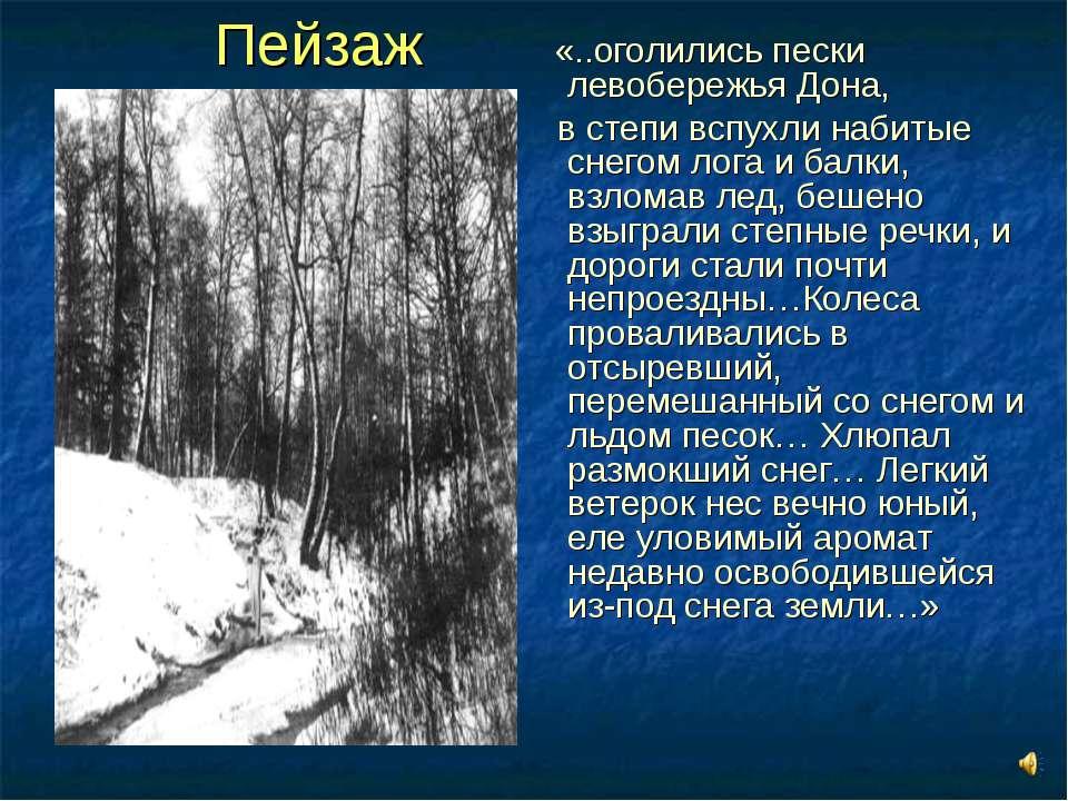 Пейзаж «..оголились пески левобережья Дона, в степи вспухли набитые снегом ло...