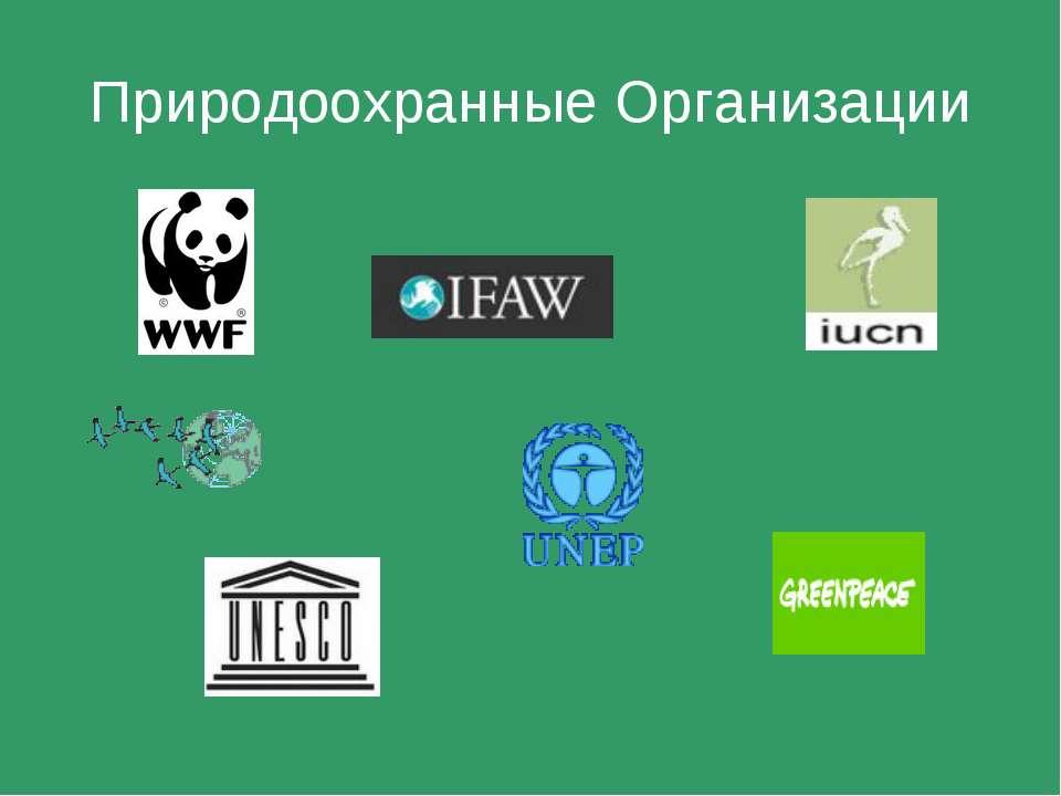 Природоохранные Организации
