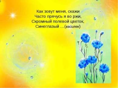 Как зовут меня, скажи Часто прячусь я во ржи, Скромный полевой цветок, Синегл...