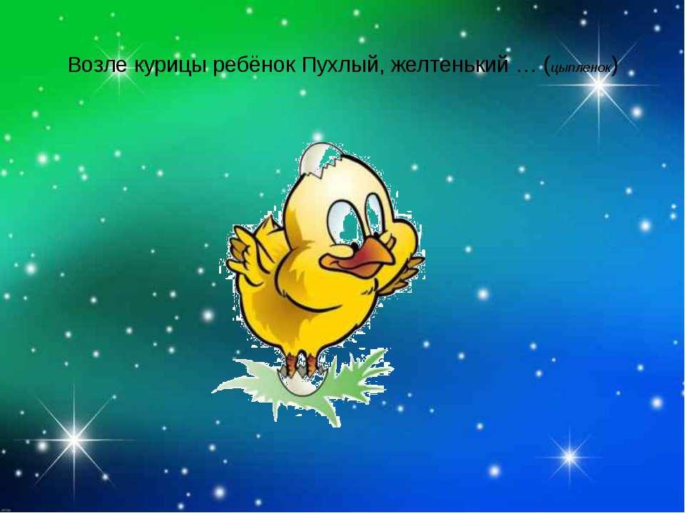 Возле курицы ребёнок Пухлый, желтенький … (цыпленок)