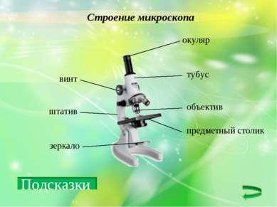 Строение микроскопа окуляр объектив тубус винт штатив зеркало предметный столик