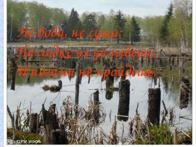 Не вода, не суша: На лодке не уплывешь, И ногами не пройдешь.