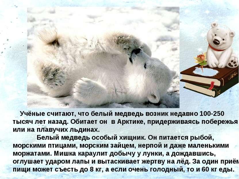 Учёные считают, что белый медведь возник недавно 100-250 тысяч лет назад. Оби...