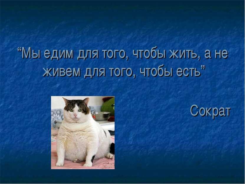 """""""Мы едим для того, чтобы жить, а не живем для того, чтобы есть"""" Сократ"""