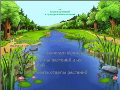 Тема: Значение растений в природе и жизни человека Цели: Обобщить знания о ро...