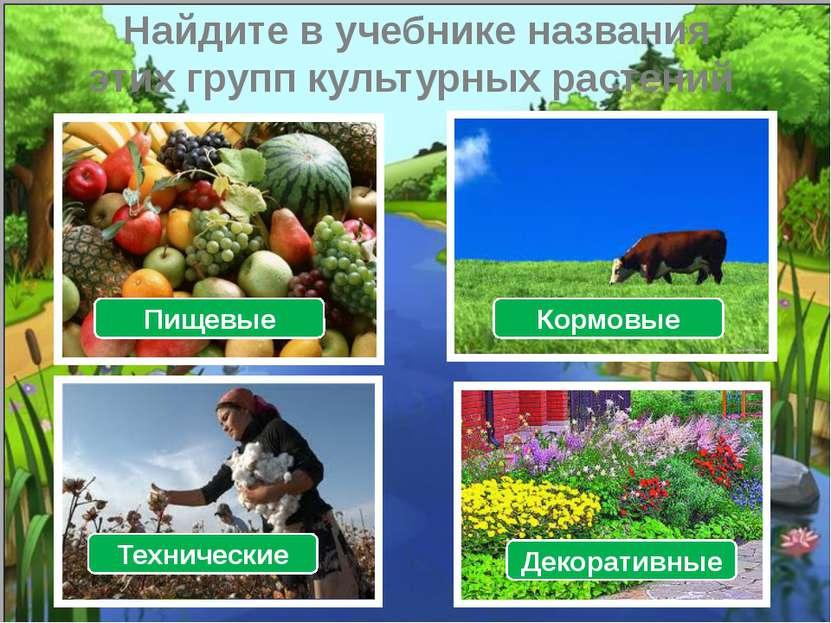 Найдите в учебнике названия этих групп культурных растений Пищевые Кормовые Т...