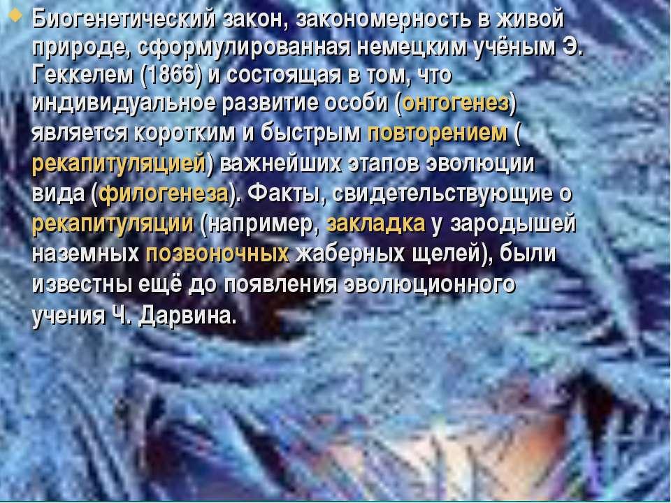 Биогенетический закон, закономерность в живой природе, сформулированная немец...