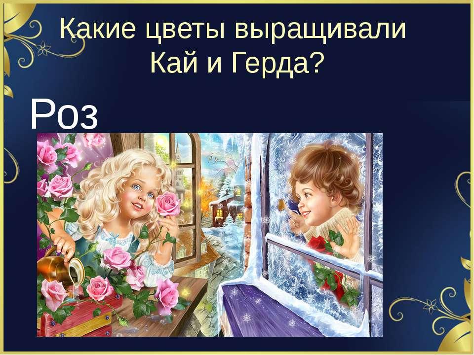 Какие цветы выращивали Кай и Герда? Розы