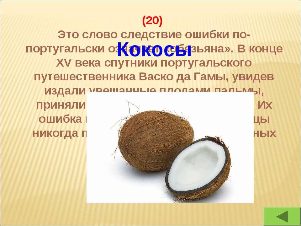 (20) Это слово следствие ошибки по-португальски означает «обезьяна». В конце ...