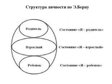 Структура личности по Э.Берну