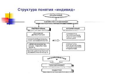 Структура понятия «индивид»