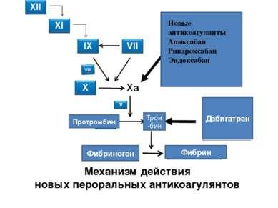 Механизм действия новых пероральных антикоагулянтов Новые антикоагулянты Апик...