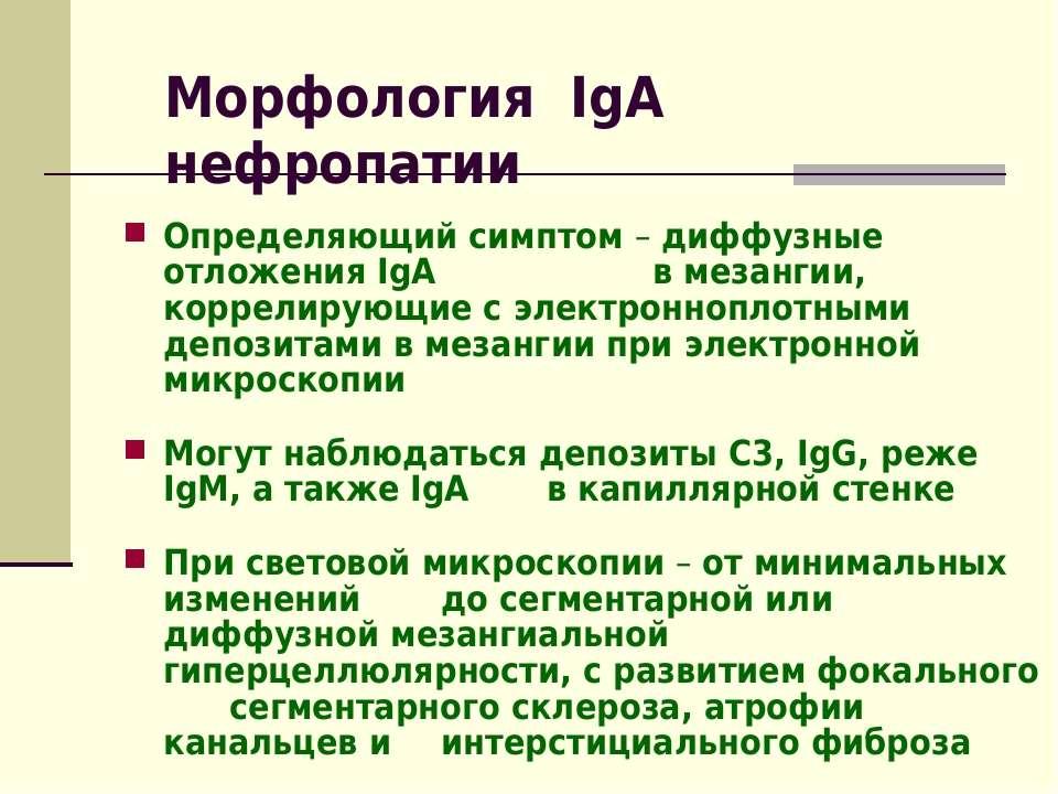 Морфология IgА нефропатии Определяющий симптом – диффузные отложения IgA в ме...
