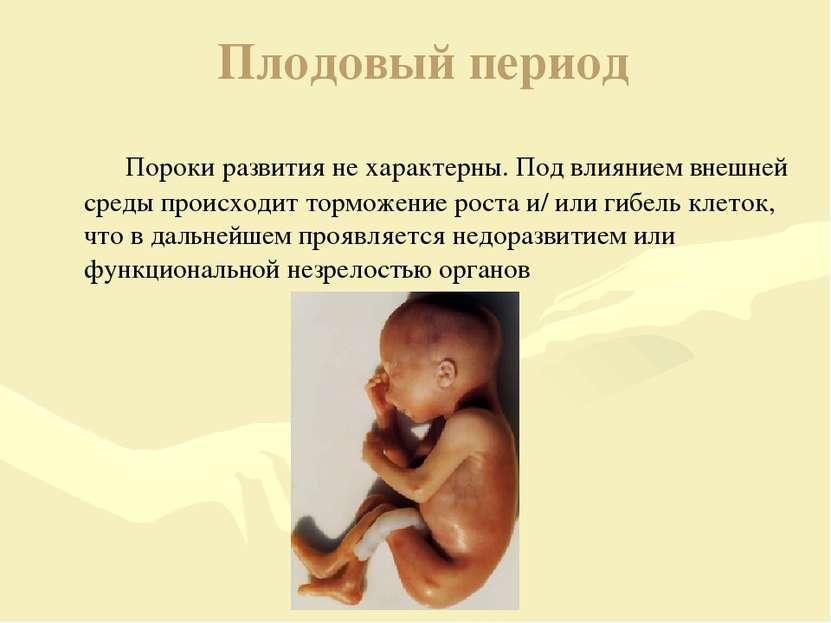 Плодовый период Пороки развития не характерны. Под влиянием внешней среды про...