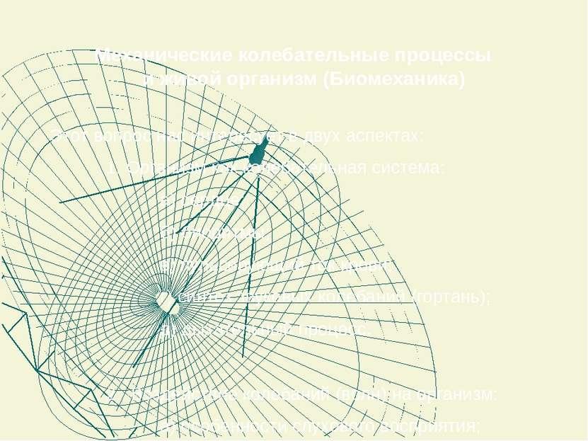 Механические колебательные процессы и живой организм (Биомеханика) Этот вопро...