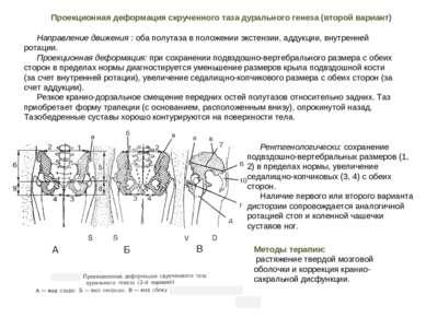 Направление движения : оба полутаза в положении экстензии, аддукции, внутренн...