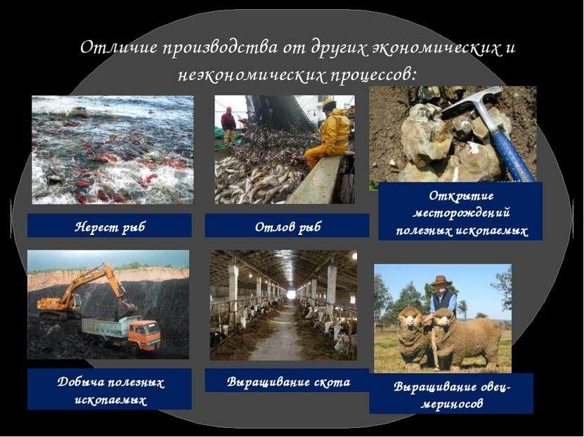 Отличие производства от других экономических и неэкономических процессов: Нер...