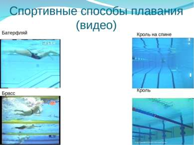 Спортивные способы плавания (видео) Батерфляй Брасс Кроль на спине Кроль
