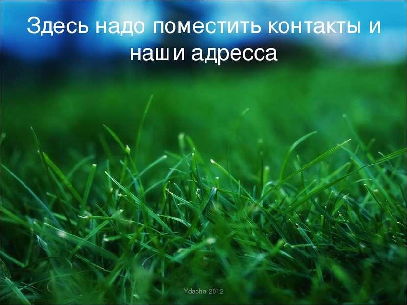 Здесь надо поместить контакты и наши адресса Ydacha 2012 Ydacha 2012