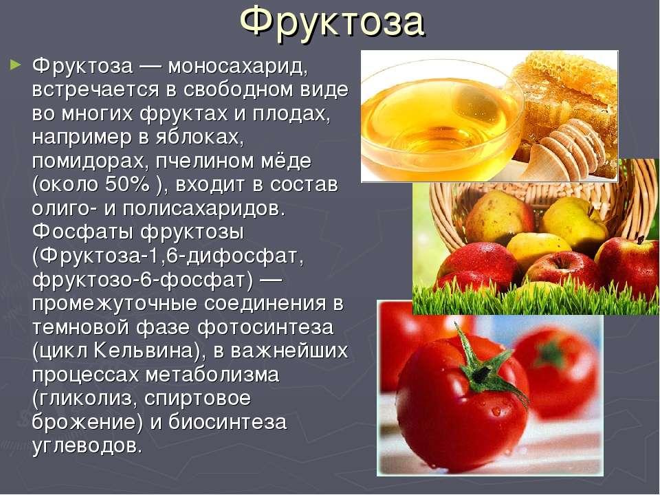 Фруктоза Фруктоза — моносахарид, встречается в свободном виде во многих фрукт...