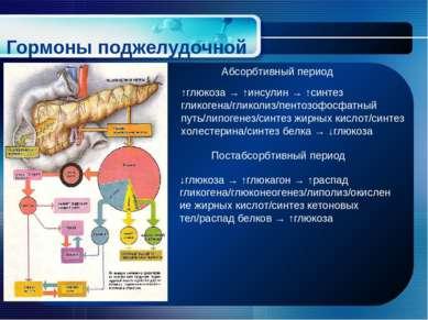 Гормоны поджелудочной железы ↑глюкоза → ↑инсулин → ↑синтез гликогена/гликолиз...