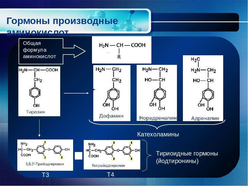 Гормоны производные аминокислот Общая формула аминокислот Катехоламины Тириои...