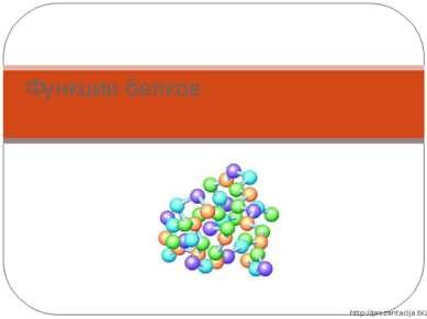 Функции белков http://prezentacija.biz