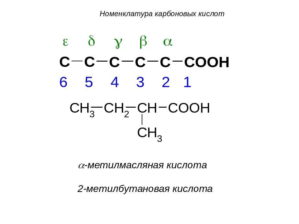 a-метилмасляная кислота 2-метилбутановая кислота Номенклатура карбоновых кислот