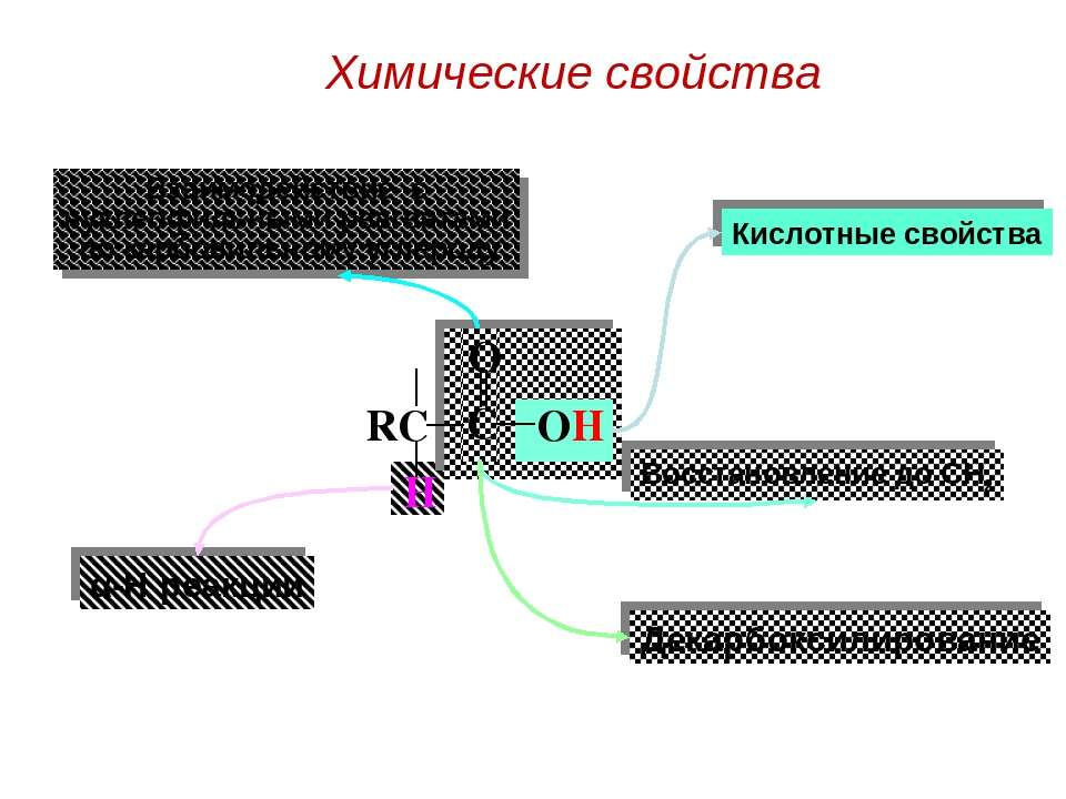 Кислотные свойства Взаимодействие с нуклеофильными реагентами по карбонильном...