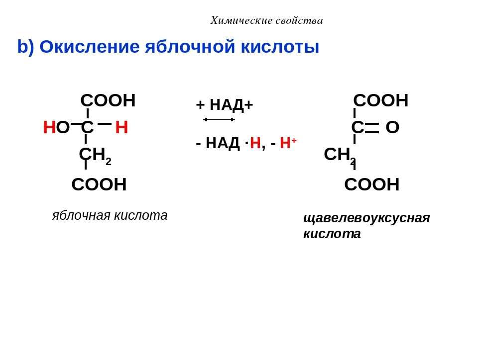 Химические свойства b) Окисление яблочной кислоты COOH COOH HO C H C O CH2 CH...