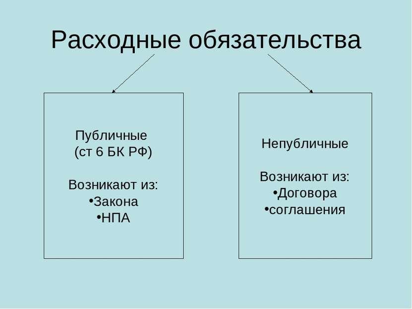 Расходные обязательства Публичные (ст 6 БК РФ) Возникают из: Закона НПА Непуб...