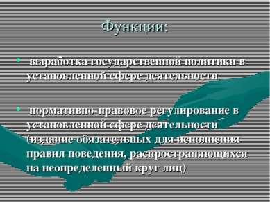 Функции: выработка государственной политики в установленной сфере деятельност...