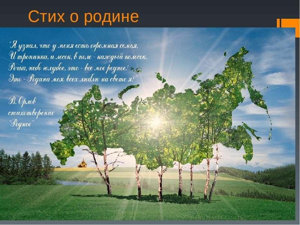 Люблю родину свою россию стих