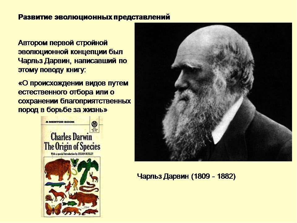 development of charles darwin Charles darwin's work has had a huge influence on the world, specifically in the sciences while darwin hypothesized and theorized many things some parts of his research were more salient to psychology than other aspects.
